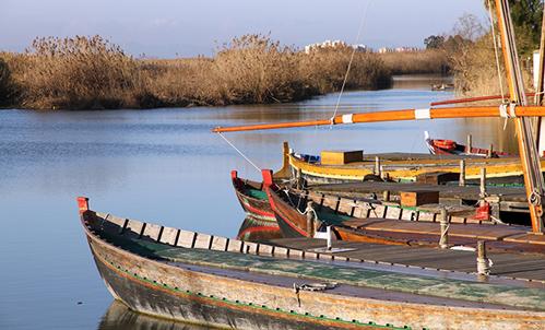 Albufera barcas